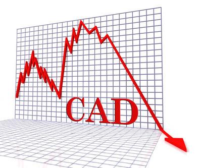 Cad 图负代表加拿大钱预测 3d Renderi