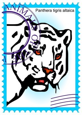 Vector stamp with tiger (Panthera tigris altaica)