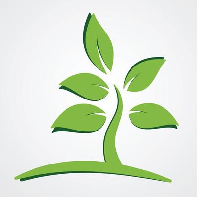 绿色的植物自然观
