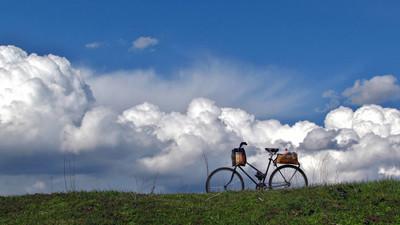 自行车在草坪上