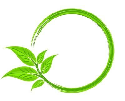 绿色的树叶与框架