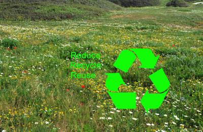如何保护环境︰ 减少,回收,再利用
