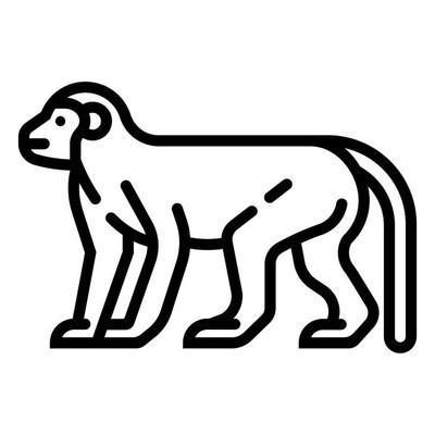 Monkey Line illustration