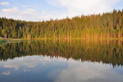 秋天的森林湖倒影
