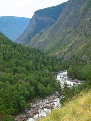 河 chulcha