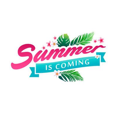 夏季横幅矢量图