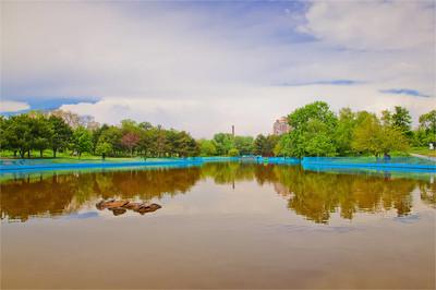 夏公园与池塘