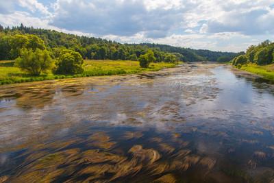 莫斯科河,vasilyevskoye 的村庄