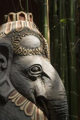 在丛林里的雕像