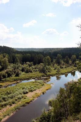 从森林和河流景观照片