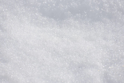 sunny white snow background