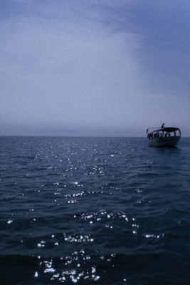 海  海总是下。向往的模样