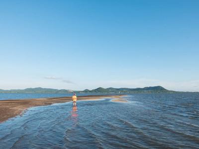 男人站在海与海花葶背景