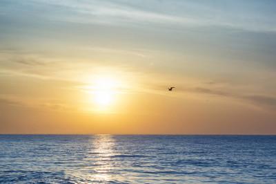 日出在海。清晨的海景。清晨在海滩上