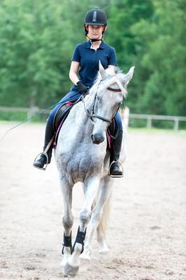 在马术学校骑马的年轻女士。培训过程