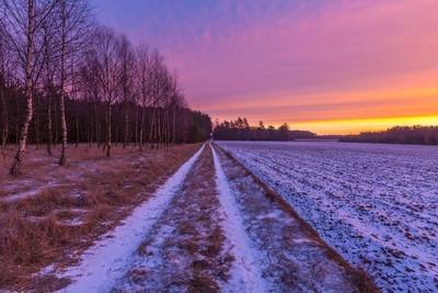 在农业领域的日出