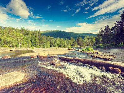 美丽的景色的挪威山区河流夏季