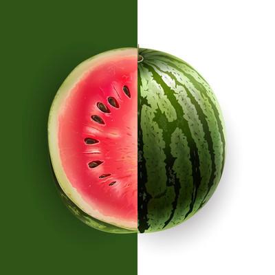 切片的西瓜。矢量图