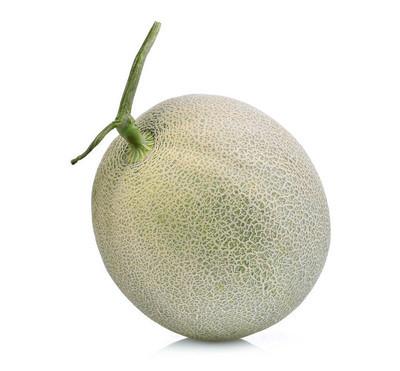 整个日本瓜、 绿色瓜或香瓜甜瓜孤立无援