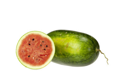 白色背景上的水瓜