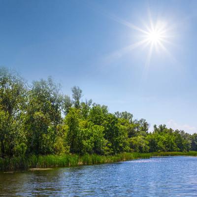 阳光下美丽的夏日河流