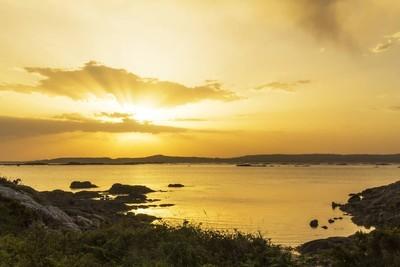 阳光与金黄色的夕阳