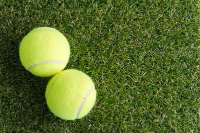 在草坪上的网球