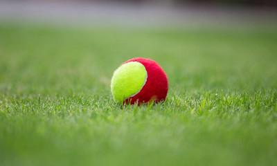 网球球在场上