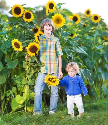 两个孩子在一朵向日葵